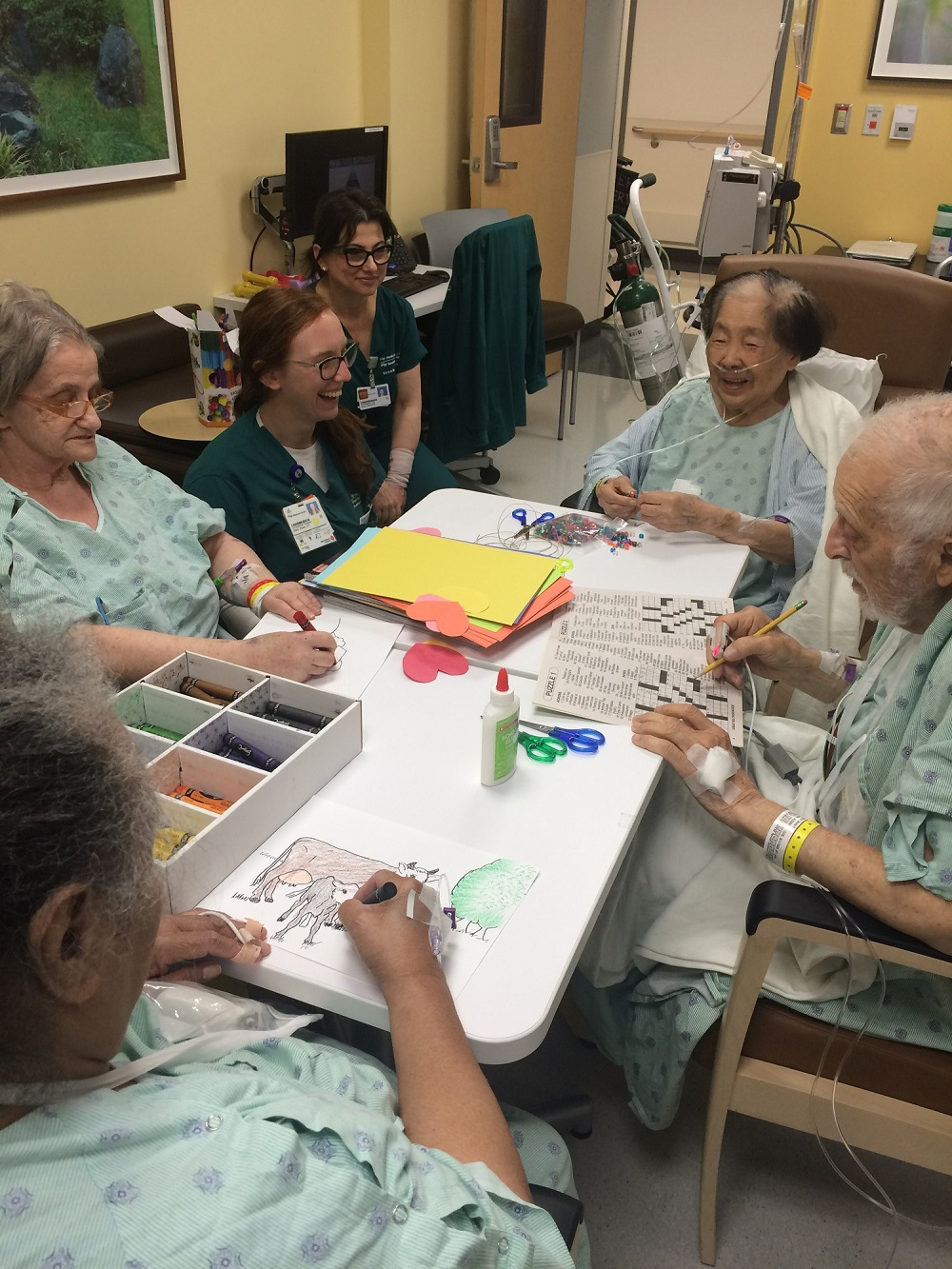 Volunteers for the Acute Care for the Elderly (ACE) Program